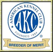 Proud to be an AKC Breeder of Merit